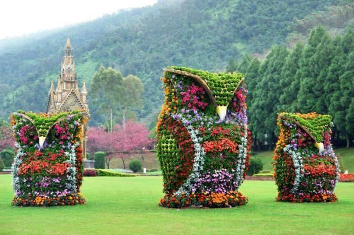 flower landscape 4
