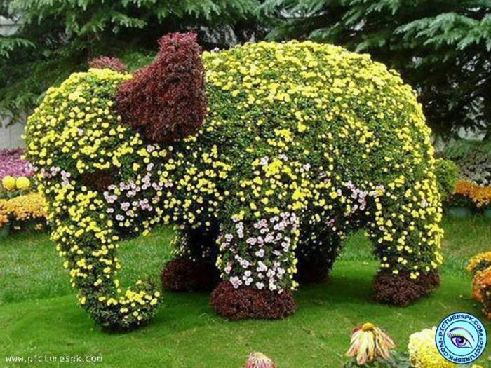 flower sculpture 6