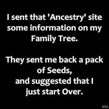 funny funny ancestry tree