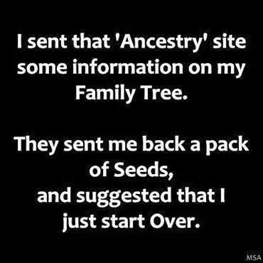 funny funny ancestry tree