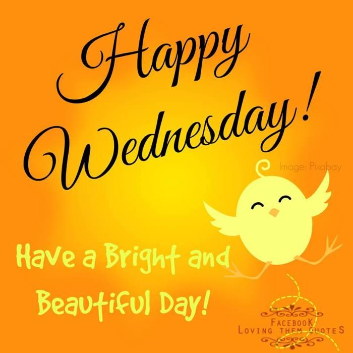 happy wednesday yellow with bird