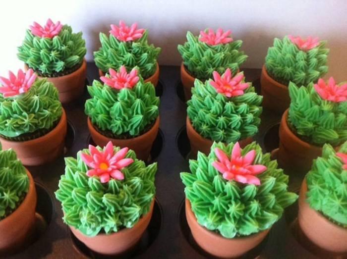 cupcake cactus