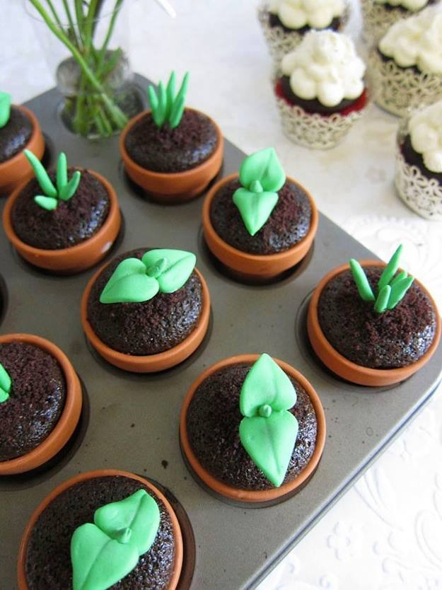 cupcakes potted plants