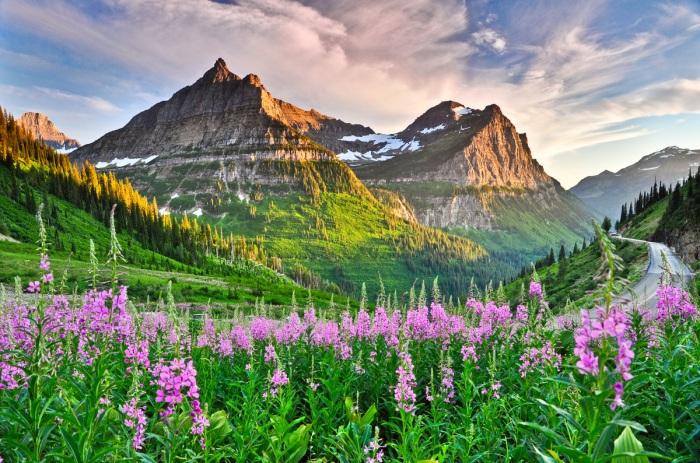 a glacier national park