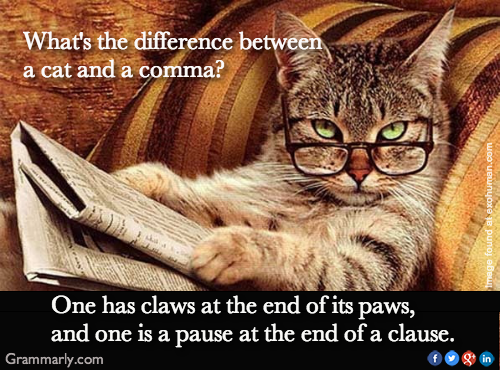 cat and comma difference