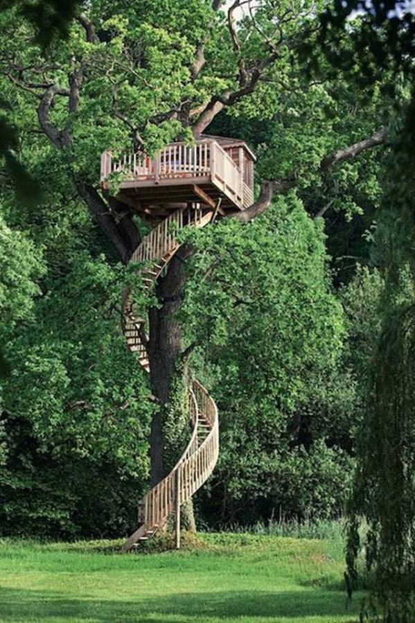 tree house winding