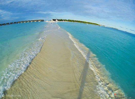 Natural Walkway in Maldives