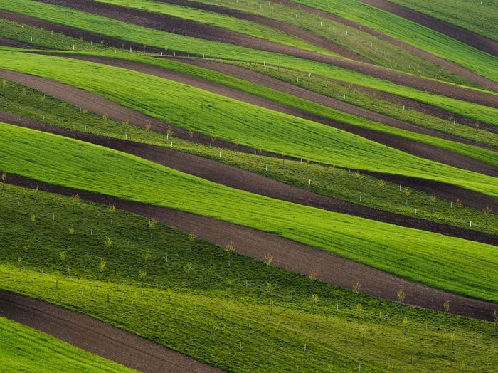 rolling-green-fields-moravia_90427_990x742