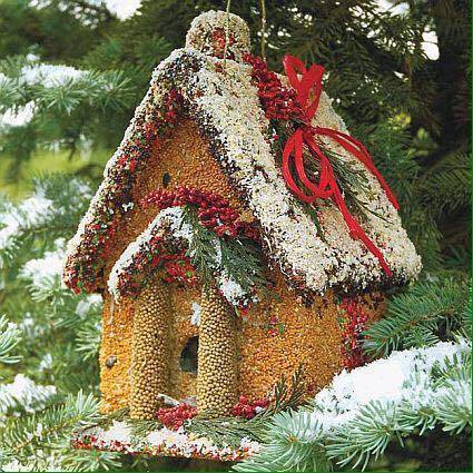 Let's not forget our feathered friends. Wonderful idea for an edible bird house