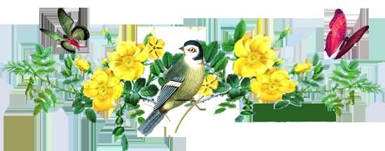 divider flowers & bird