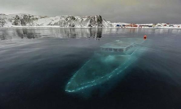 Sunken yacht in Antartica