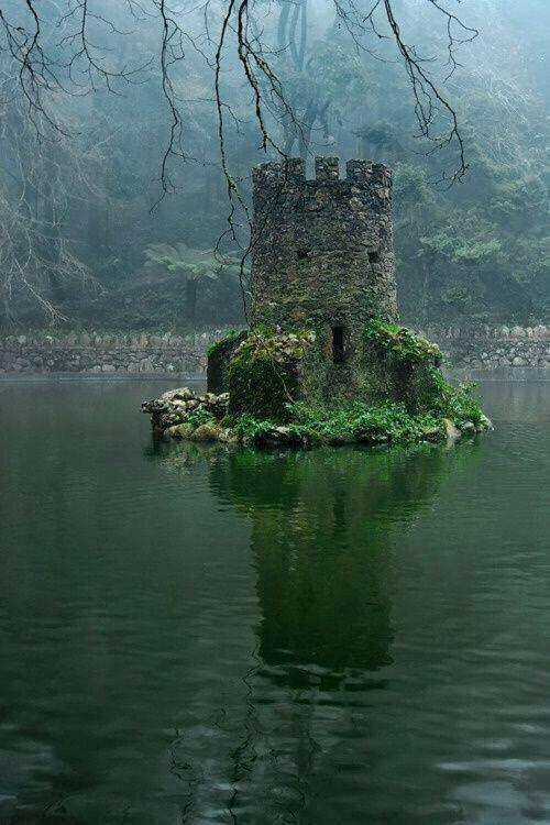 The overgrown ruins of a flooded Celtic castle