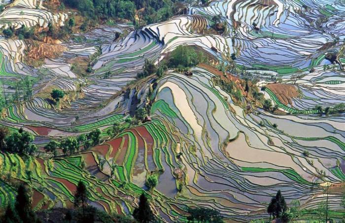 aerial-photography-yunna-china-terraced-rice-fields