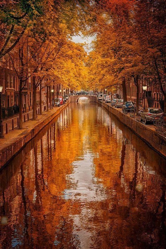 autumn-in-amsterdam
