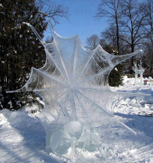 frozen-spider-web